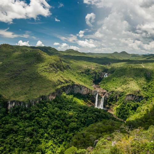 Single Origin koffie uit Brazilië: Probeer nu de Best Collect Daterra